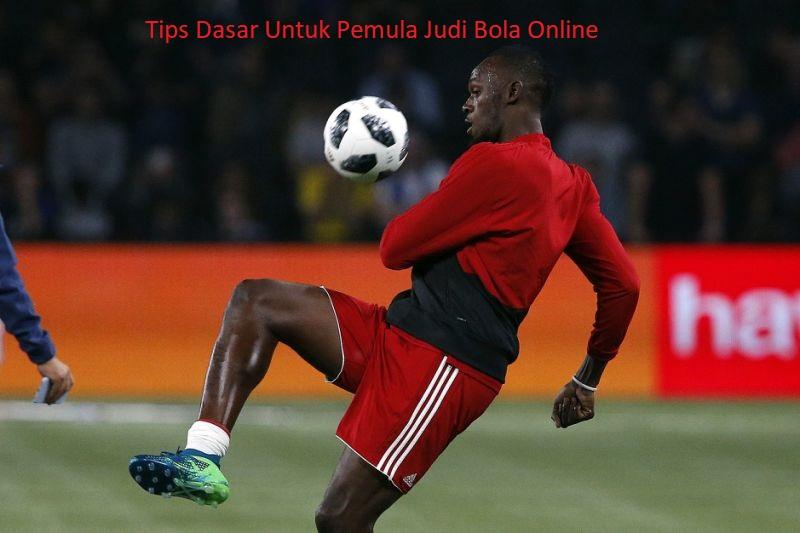 Tips Dasar Untuk Pemula Judi Bola Online